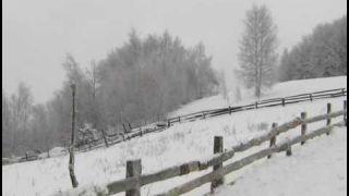 Zana Vejte snegovi